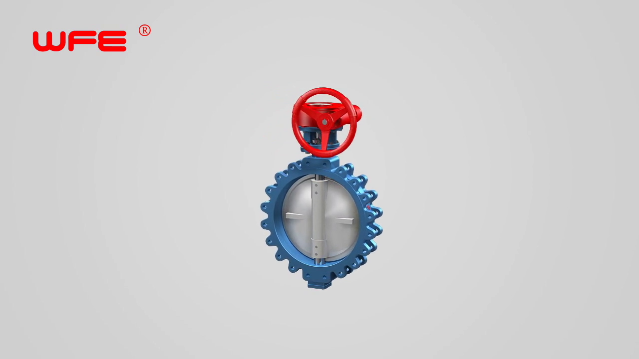 WFE Lug Sealing Butterfly Valves 3D Demonstration