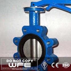 Lugged Concentric Butterfly Valve