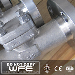 F316L Stainless Steel Check Valve