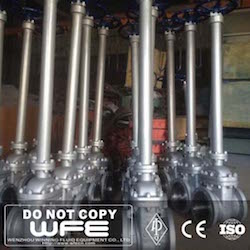 Cryogenic Extend Stem Gate Valve