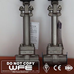 Cryogenic Forged globe valve