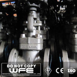 WFE Forged Steel Globe Valve