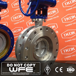 SUS304 Flanged Butterfly Valve