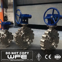 Worm Gear Stainless Steel Butterfly Valve