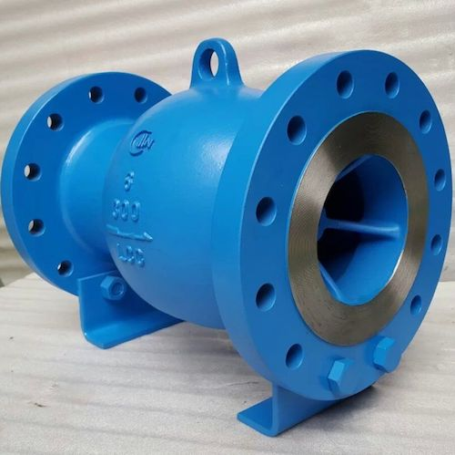WCB Axial Flow Check Valve